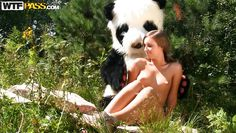 panda and his chick in the wilderness