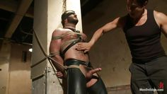 hairy guy gets handjob in bondage
