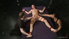 smooth ass gay tied on bed and exploited