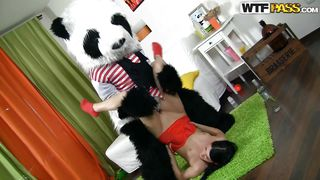 panda got himself a horny cunt
