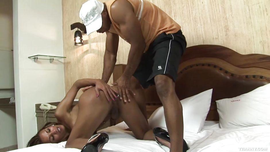 trannies dick Sexy sucking