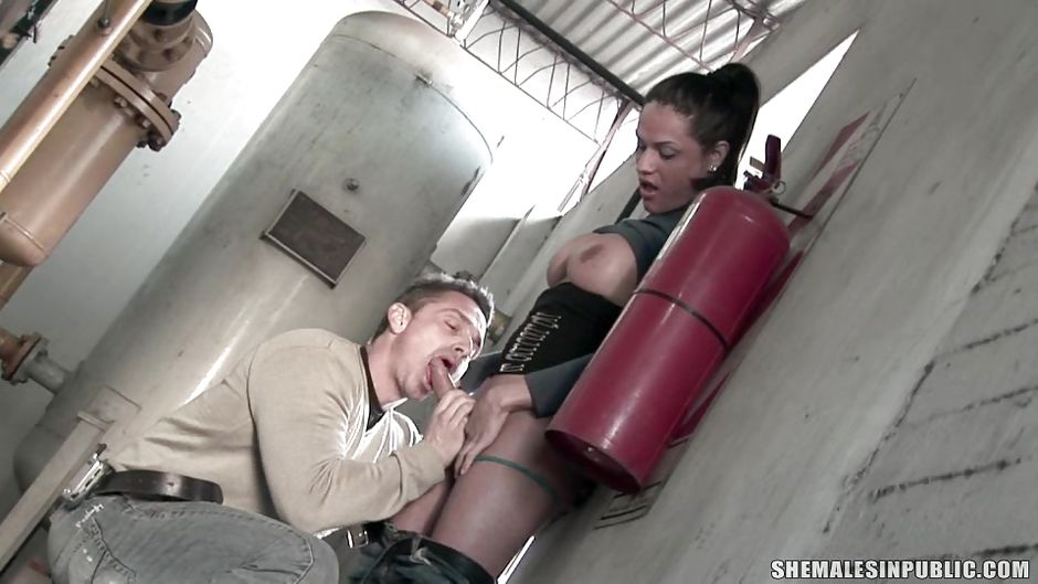 Shemale Gets A Blowjob 10
