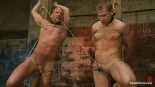 gay sex slaves treated like meat