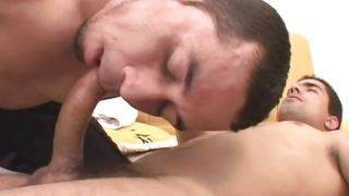 brunette gays with unshaved dicks having oral and anal sex