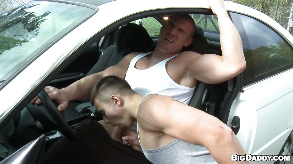 Car gay muscle sexy