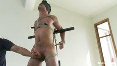he wants to humiliate him
