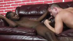 white gay offering blowjob to his black friend