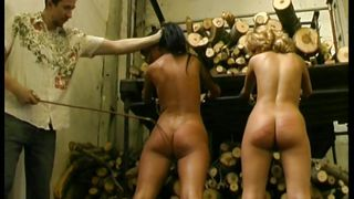 bonded bitches are punished severely