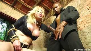 mirela abelha takes big black cock