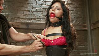 gagged for her master's pleasure