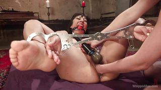 horny mistress plays with vivi marie