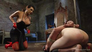 tied up an humiliated by a transsexual queen
