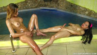 sexy oiled shemales enjoy mutual masturbation