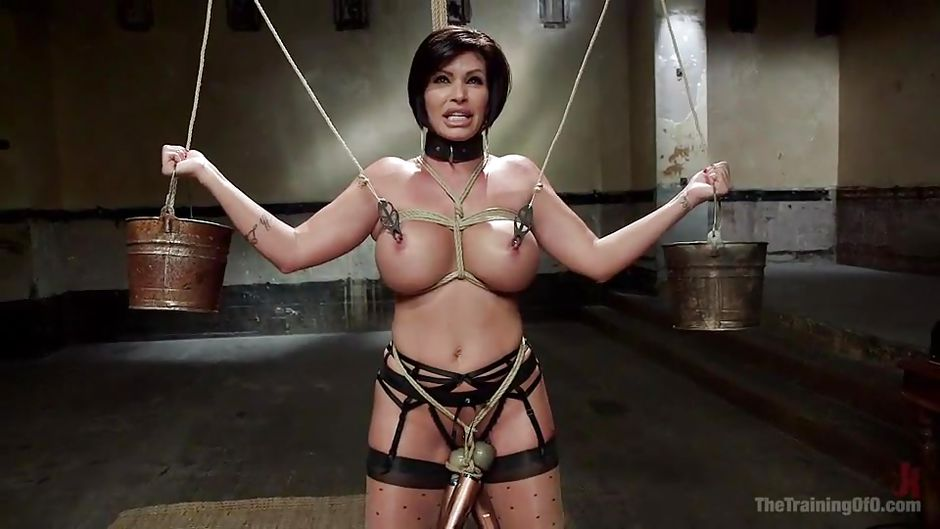 Busty milf sex slaves