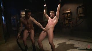 tied up stud gets dominated and fucked from behind