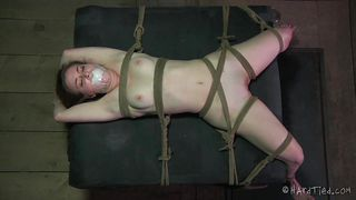tied and used like a cheap whore