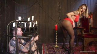 dominatrix shemale rub - ... Shemale Mistress Has Her Slave In A Cage