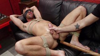 bound slave gets tugged off
