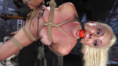slutty lorelei got tied up
