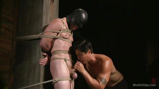 bound gimp gets wanked