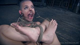 two slaves suffer in this executor's dungeon