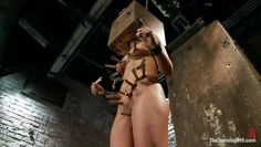 slut gets a box on head and more