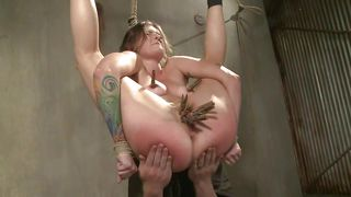 being tied up in the air turns her on
