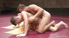 guys get horny in the wrestling arena