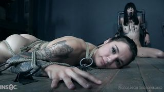 What Further Punishments Await These Inked Beauties?