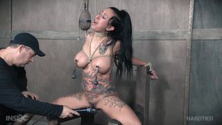 Bdsm Request Accepted By Lily Lane