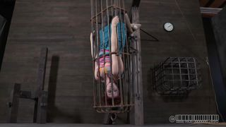 A Caged Pussy Awaits Punishment