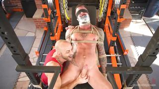 Dolf Allows Himself To Be Dominated Again