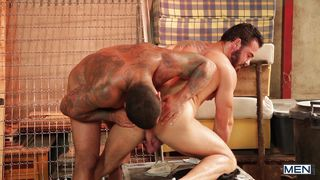 Horny Guys Enjoying Each Others Muscled Body