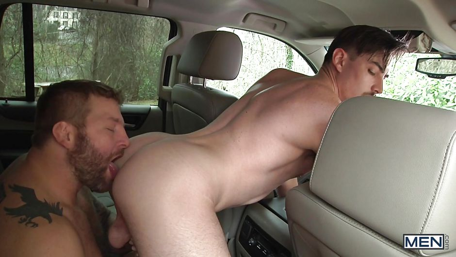 Gaybilder