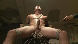 How Many Clothespins Can He Handle?